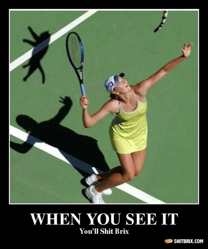 Cats-cat-tenis.jpg