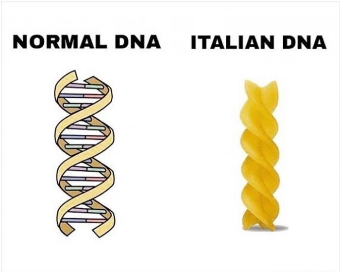 Culture-Italian-DNA.jpg