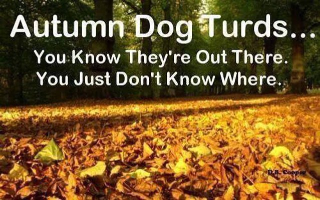 Dogs-Autumn-Dog-Turds.jpg