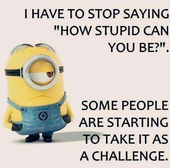 Doh-StupidChallenge.jpg