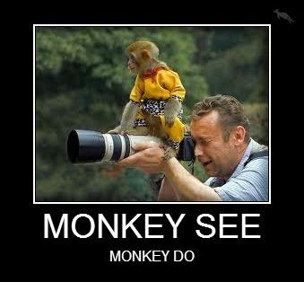 Monkeys-MONKEY-SEE.jpg