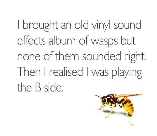 Music-Wasp-Sound-Effects-Album.jpg
